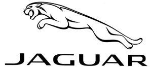 Jaguar logo image